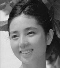 山本陽子 若い頃